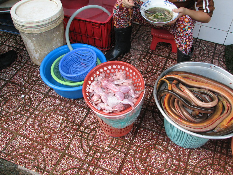 Skinned frogs and snakes for sale.